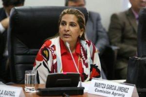 Maritza García renunció a presidencia de la Comisión de la Mujer